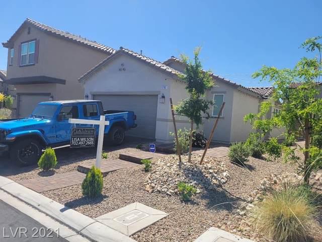 5785 Blue Serenity Court, Las Vegas, NV 89118 (MLS #2293757) :: Signature Real Estate Group