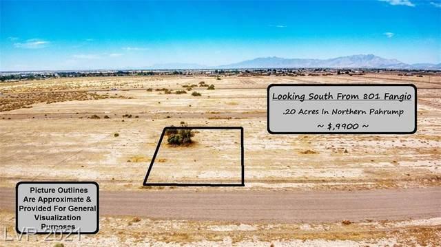 801 W Fangio Lane, Pahrump, NV 89060 (MLS #2306875) :: DT Real Estate