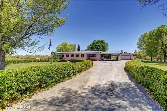 1171 Dale Way, Pahrump, NV 89060 (MLS #2311597) :: DT Real Estate
