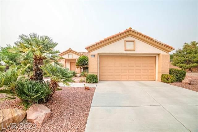 10433 Frostburg Lane, Las Vegas, NV 89134 (MLS #2321547) :: Keller Williams Realty