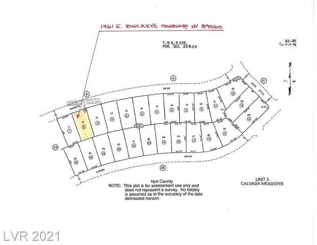 1961 E Buckeye Drive, Pahrump, NV 89060 (MLS #2323379) :: Alexander-Branson Team | Realty One Group