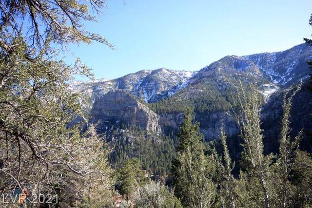 4878 Snow White Road, Mount Charleston, NV 89124 (MLS #2332367) :: Keller Williams Realty