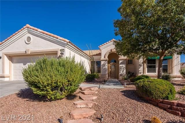 10412 Long Leaf Place, Las Vegas, NV 89134 (MLS #2334287) :: Hebert Group | eXp Realty