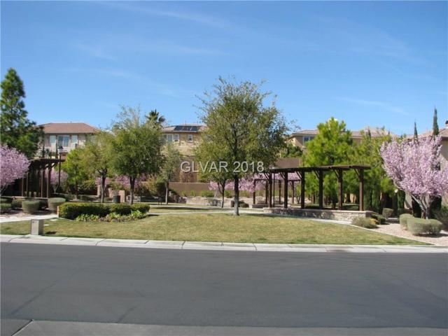 11377 Rancho Villa Verde, Las Vegas, NV 89138 (MLS #1894718) :: Realty ONE Group