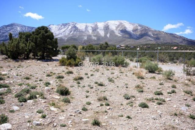 4 Lonesome Elk, Cold Creek, NV 89124 (MLS #1985475) :: Catherine Hyde at Simply Vegas