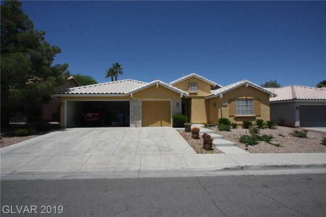 9936 Masked Duck, Las Vegas, NV 89117 (MLS #1998993) :: Trish Nash Team