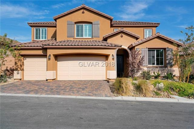 10744 Hammett Park, Las Vegas, NV 89166 (MLS #2049102) :: Vestuto Realty Group