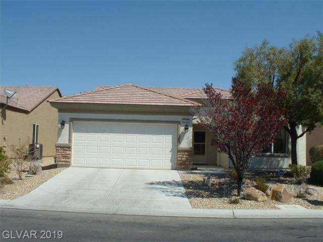 2120 Night Parrot, North Las Vegas, NV 89084 (MLS #2079932) :: Five Doors Las Vegas