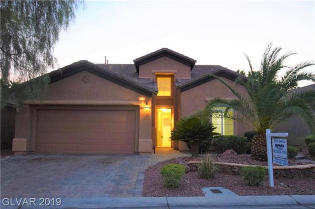 6215 Old Rose, Las Vegas, NV 89148 (MLS #2111271) :: Vestuto Realty Group