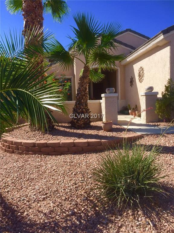 1857 Mountain Ranch, Henderson, NV 89012 (MLS #1923359) :: Realty ONE Group