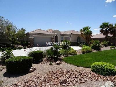 220 Florio, Las Vegas, NV 89138 (MLS #1933362) :: Signature Real Estate Group