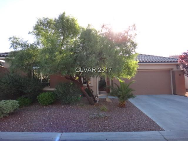 912 Viscanio, Las Vegas, NV 89138 (MLS #1938778) :: The Snyder Group at Keller Williams Realty Las Vegas