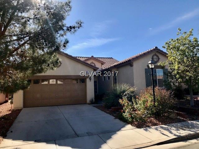 4449 Verdiccio, Las Vegas, NV 89141 (MLS #1953541) :: Signature Real Estate Group