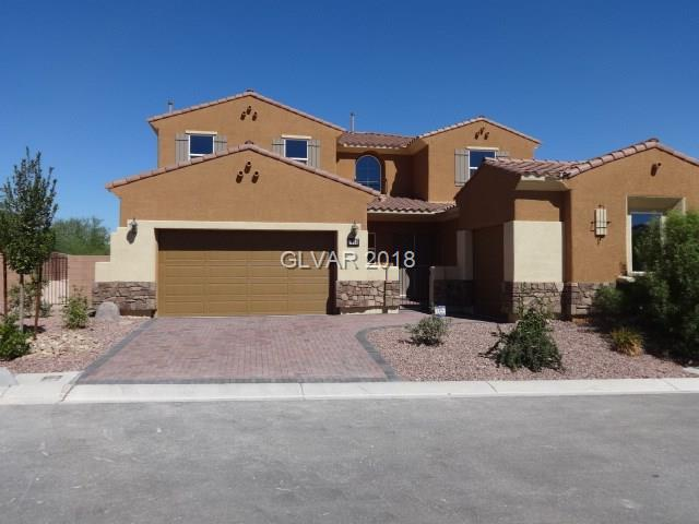 7786 Tim Tam, Las Vegas, NV 89178 (MLS #1962229) :: Signature Real Estate Group