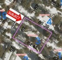 2130 Via Vita, Mount Charleston, NV 89124 (MLS #2001652) :: Signature Real Estate Group