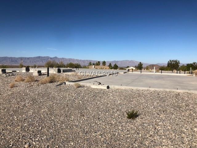 5880 S Mojave, Pahrump, NV 89061 (MLS #2031560) :: Trish Nash Team
