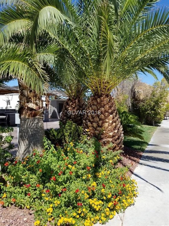 8175 Arville #21, Las Vegas, NV 89139 (MLS #2032405) :: Trish Nash Team