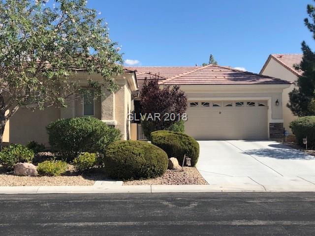 3232 Flyway, North Las Vegas, NV 89084 (MLS #2036845) :: The Machat Group | Five Doors Real Estate