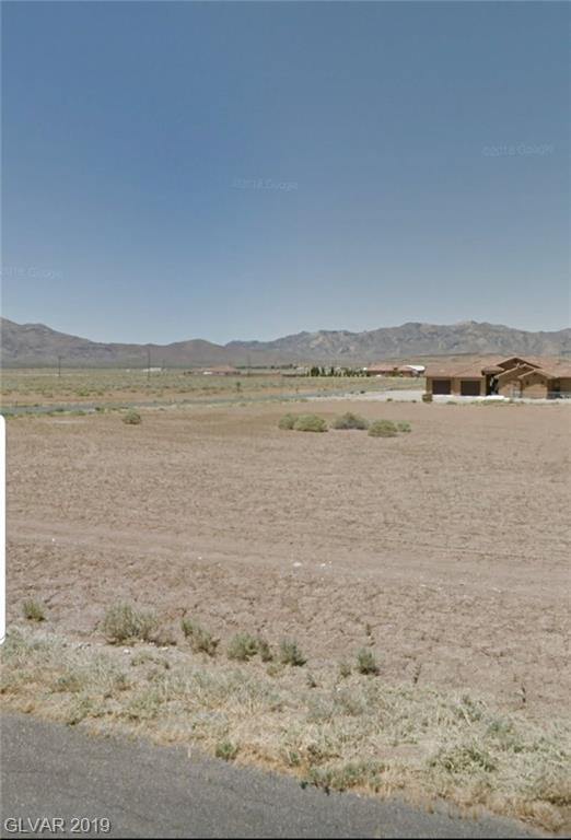 2870 S Woodchips, Pahrump, NV 89048 (MLS #2100192) :: ERA Brokers Consolidated / Sherman Group
