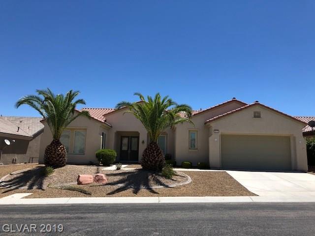 2114 Twin Falls, Henderson, NV 89044 (MLS #2107683) :: Capstone Real Estate Network