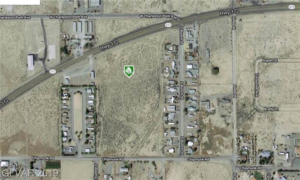1191 Nevada Highway 372 - Photo 1