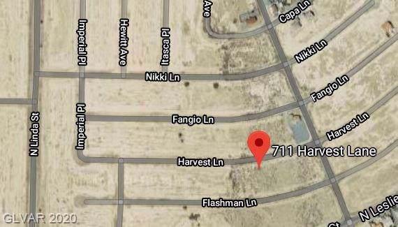 711 W Harvest Lane, Pahrump, NV 89060 (MLS #2167253) :: The Lindstrom Group