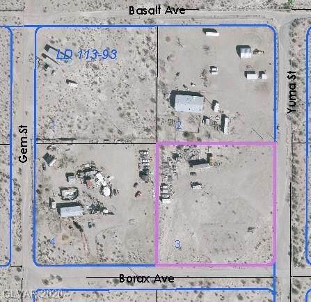 Borax, Sandy Valley, NV 89019 (MLS #2171376) :: ERA Brokers Consolidated / Sherman Group