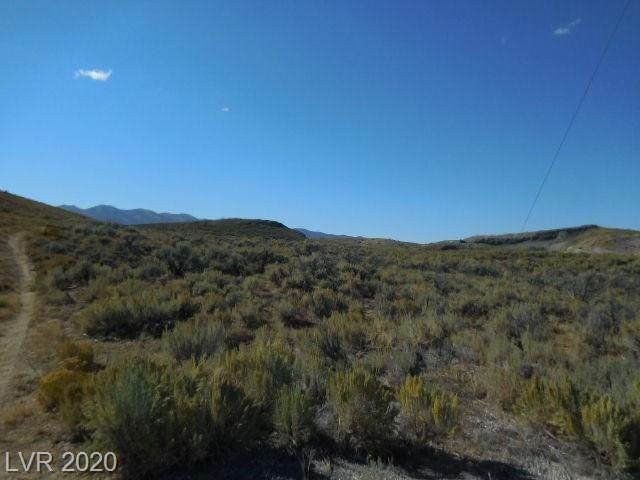 Gleason Creek Lots, Ely, NV 89301 (MLS #2174555) :: Signature Real Estate Group