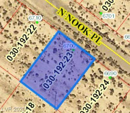 6700 Nook Place, Pahrump, NV 89060 (MLS #2179808) :: The Lindstrom Group