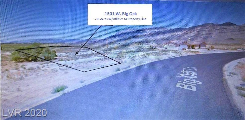 1501 Big Oak Lane - Photo 1