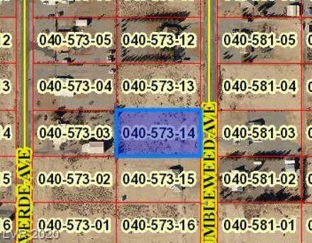 3600 Tumbleweed, Pahrump, NV 89048 (MLS #2193202) :: Kypreos Team
