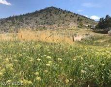 Field Street, Pioche, NV 89043 (MLS #2199285) :: Jeffrey Sabel