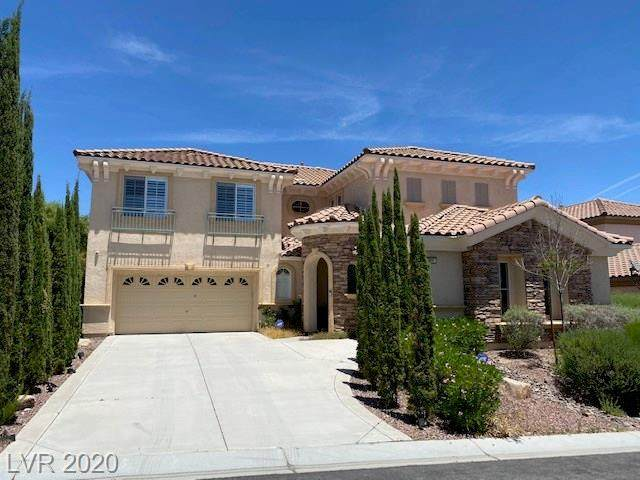 866 La Sconsa, Las Vegas, NV 89138 (MLS #2205165) :: Helen Riley Group | Simply Vegas
