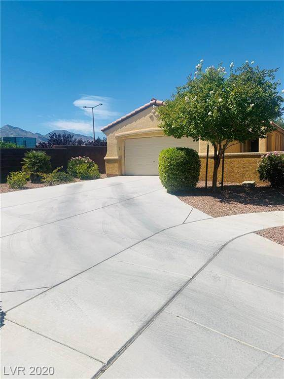 10678 April Rose Court, Las Vegas, NV 89135 (MLS #2211806) :: The Mark Wiley Group | Keller Williams Realty SW