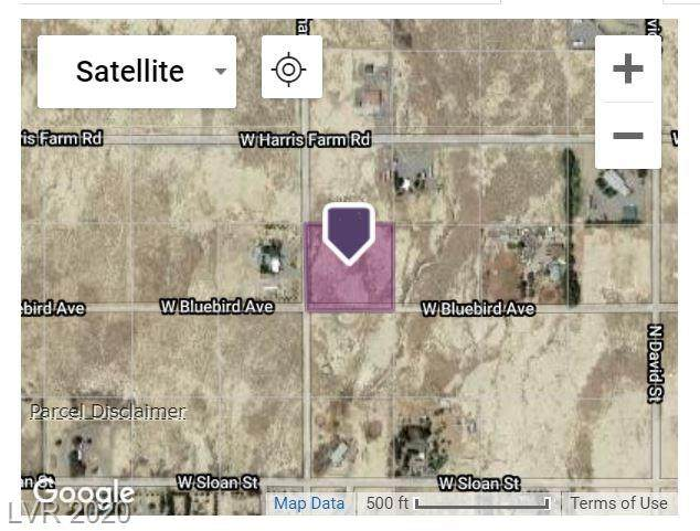 1710 Bluebird Avenue, Pahrump, NV 89060 (MLS #2249038) :: Billy OKeefe | Berkshire Hathaway HomeServices