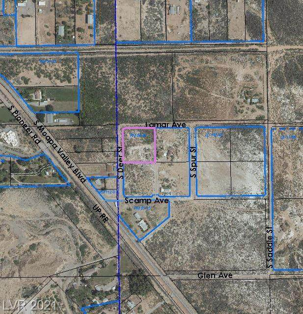 340 Scamp Avenue, Overton, NV 89040 (MLS #2284349) :: Signature Real Estate Group