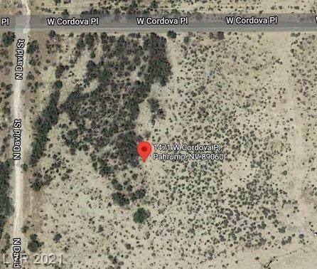 1471 W Cordova Place, Pahrump, NV 89060 (MLS #2302234) :: The Chris Binney Group | eXp Realty
