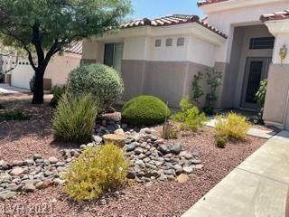 8841 Don Horton Avenue, Las Vegas, NV 89178 (MLS #2315818) :: Hebert Group | Realty One Group