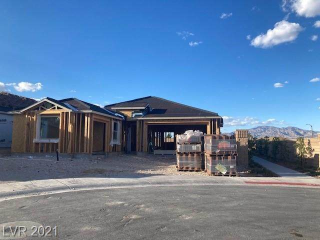 9984 Blackbark Court, Las Vegas, NV 89166 (MLS #2340584) :: Jack Greenberg Group
