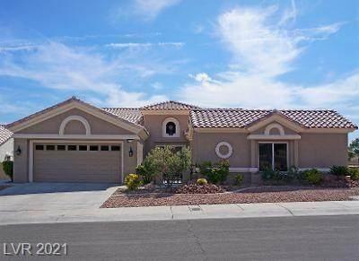 10733 Paradise Point Drive, Las Vegas, NV 89134 (MLS #2340743) :: The Perna Group