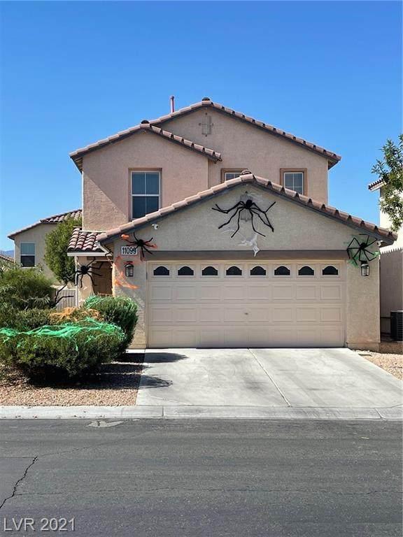 11099 Verismo Street, Las Vegas, NV 89141 (MLS #2340987) :: The TR Team