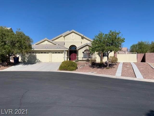 6674 Running Trout Avenue, Las Vegas, NV 89131 (MLS #2342202) :: Alexander-Branson Team | Realty One Group