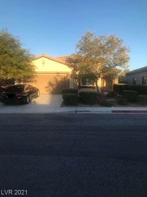 10762 Lightning Sky Street, Las Vegas, NV 89179 (MLS #2343225) :: Vegas Plus Property Management
