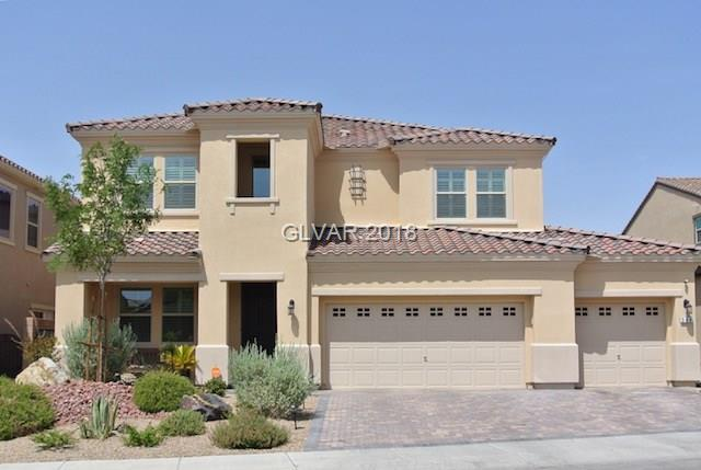 504 Punto Vallata, Henderson, NV 89011 (MLS #2011852) :: Trish Nash Team