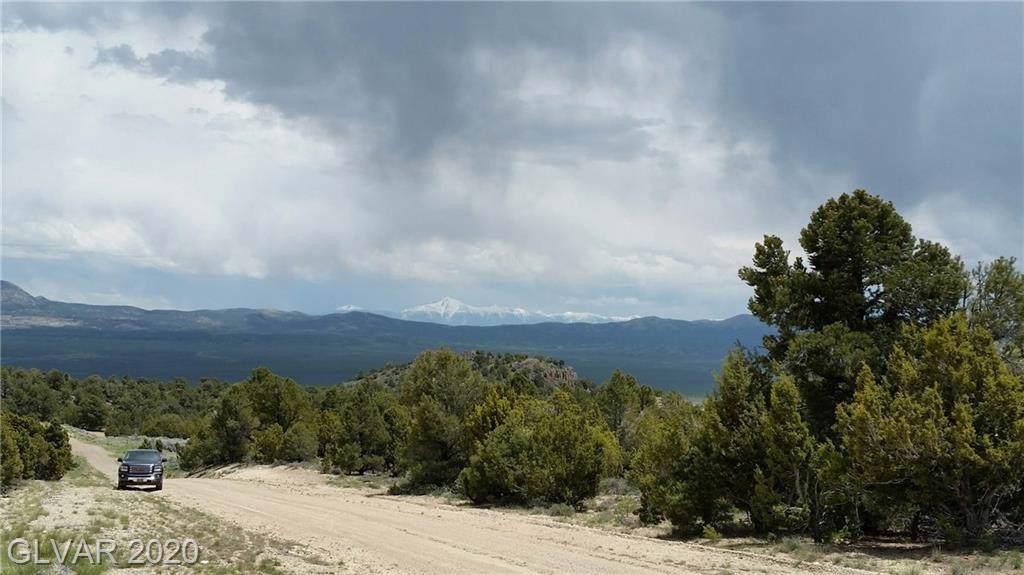 320 Ward Mountain - Photo 1