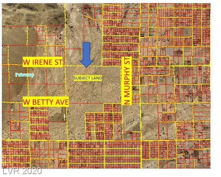 3631 Irene Street - Photo 1