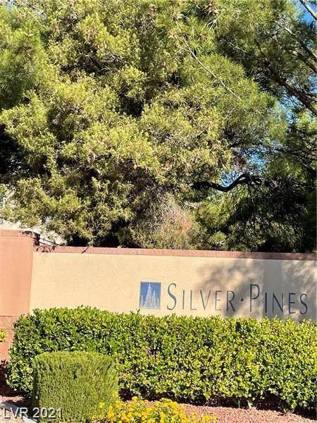353 Amber Pine Street #203, Las Vegas, NV 89144 (MLS #2325623) :: The Melvin Team