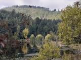 2500 Florence Lake Rd - Photo 6