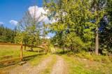 1 Elderberry Lane - Photo 78