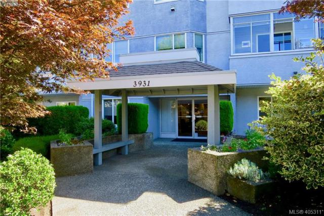 3931 Shelbourne St #205, Victoria, BC V8P 4H9 (MLS #405311) :: Day Team Realtors